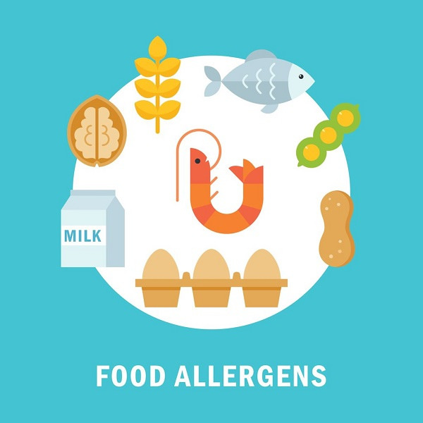 Illustration of some of the food allergens.